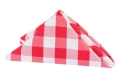 Rental store for NAPKIN, 20X20 RED WHITE GINGHAM in New Orleans LA